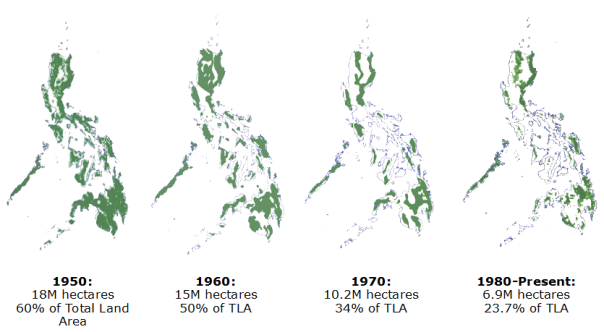 "But including artificial ""forests"" for production, the DENR says there is 23% is left."