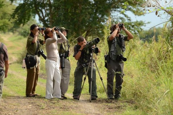 Birdwatchers in Candaba - Miko Castaneda